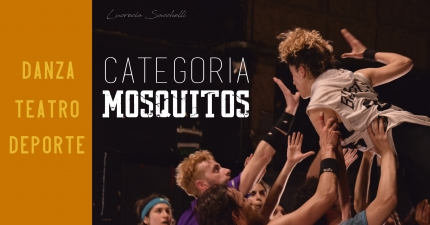 Categoriacutea Mosquitos