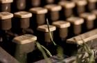 Día del periodista qué desafíos enfrenta la profesión