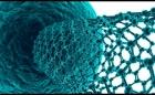 Jornadas nacionales y regionales de Bio-nanotecnología