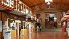 Convocatoria a Becas de Extensión Universitaria para estudiantes