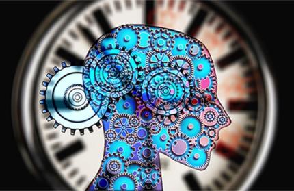 El Laboratorio de Cronobiología publicó un artículo en Science Advances